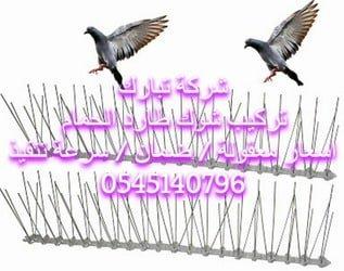 شوك طارد الحمام بالمدينة المنورة