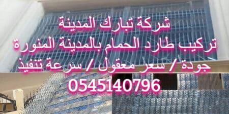 تركيب طارد الحمام بالمدينة المنورة