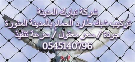 تركيب شبك طارد الحمام بالمدينة المنورة